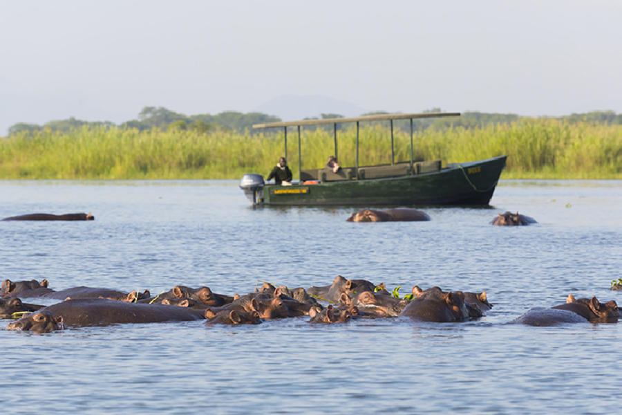 Malawi Lake + Safari
